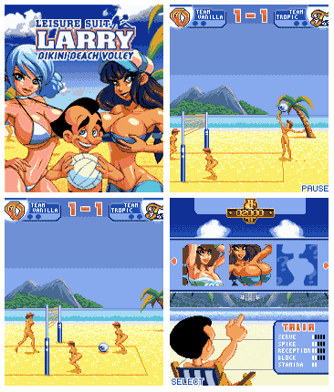 Larry Bikini Beach Volley